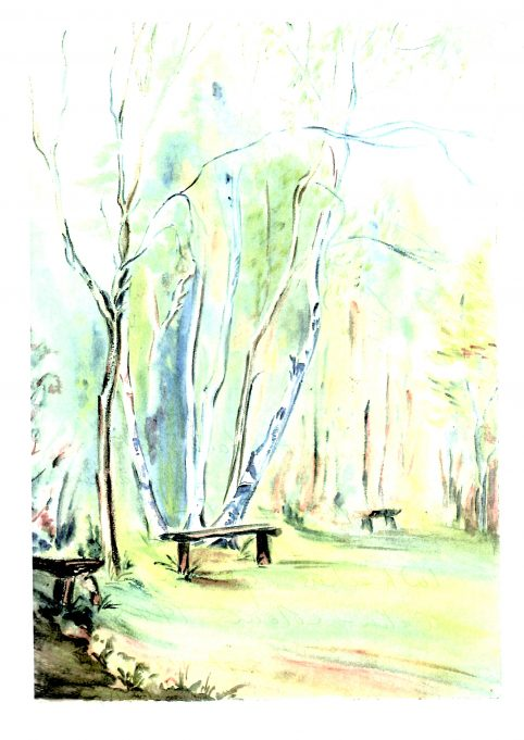 Watercolour of Thundersley Glen | Helen Stewart