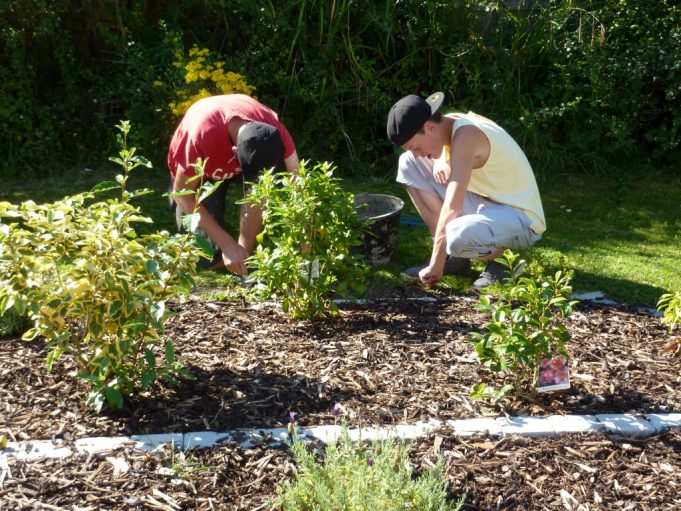 Friends of Dee Hadden weeding the remembrance garden Aug 2012.