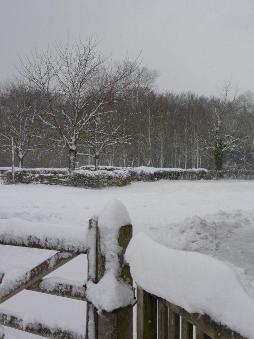 Car Park Under Snow   Margaret March