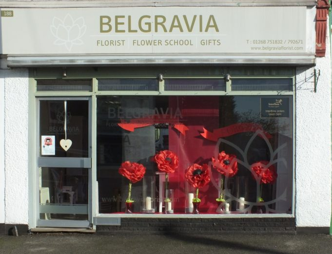 Belgravia Flowers Poppy display | Phil Coley