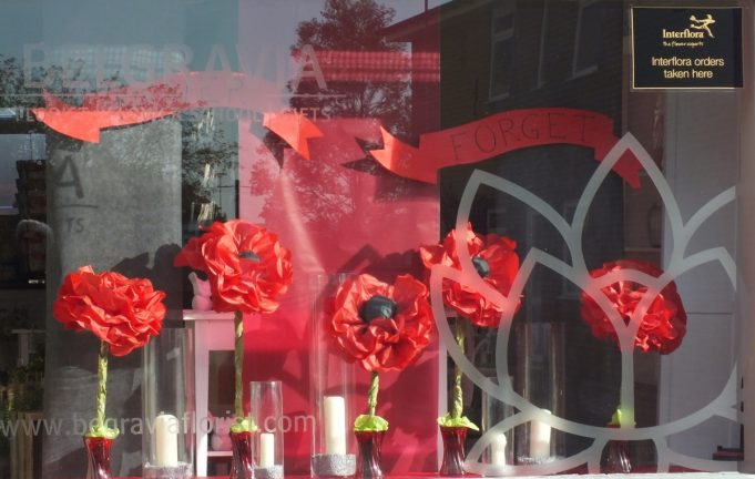 Poppies in the window | Phil Coley