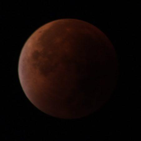 Full Blood Moon eclipse 4.17 am. FUJIFILM FinePix HS30EXR F/5.6 at 2 secs. | Phil Coley