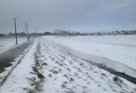 Snowdrifts In Benfleet Recreational Park