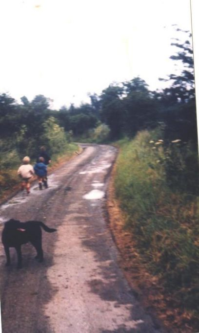 Jotman's Lane just past the farm before Canvey Way was built Approx 1972. | John Turner