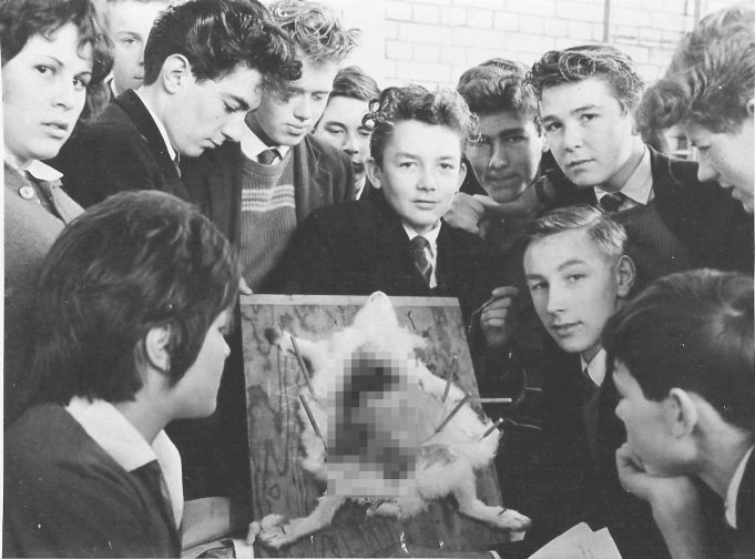 Biology class c.1960 | Ann Morrison collection