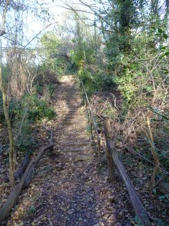Looking up The Devil Steps - Winter 2010 | Eileen Gamble