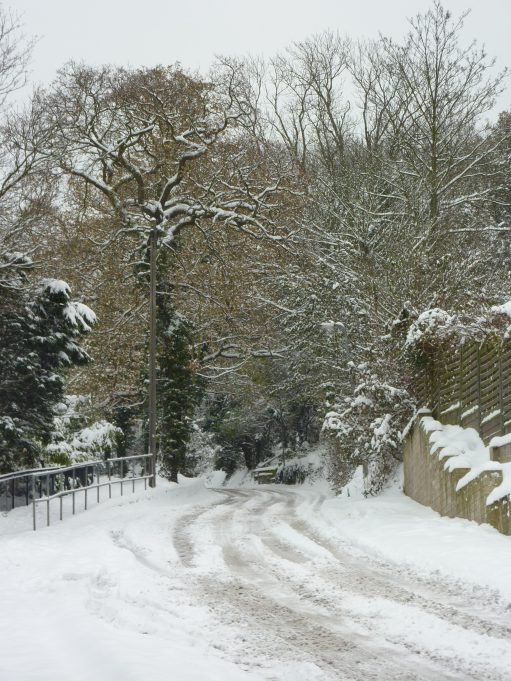 Not many cars drivers were brave or foolhardy enough to attempt Vicarage Hill. | Margaret March