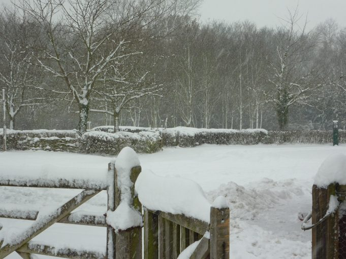 The car park at Hadleigh Country Park covered with over one foot of snow. | Margaret March