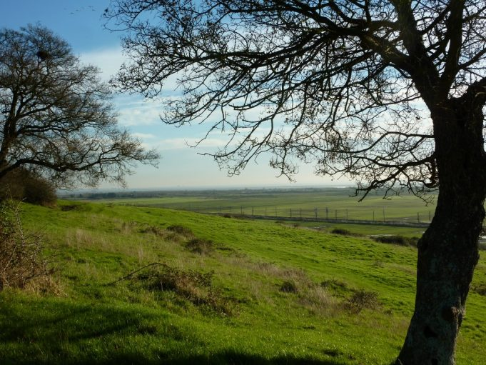 Looking out over the estuary just below Hadleigh castle.  The remains unchanged from the time of this article in the 1960's.  Photograph taken 2015. | Margaret March