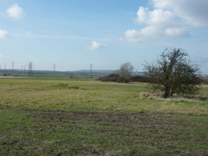 The view from the footpath at the rear of the stables looking across the RSPB site which was the Bowers Gifford Golf Course. | Margaret March