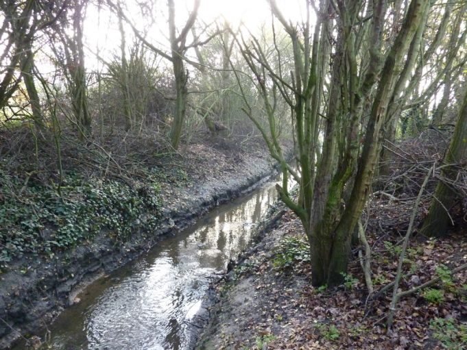 Stream beside unmade section of Rushbottom Lane. | Margaret March
