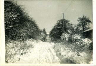 Back home in Hill Road after sledging | Harry Emery