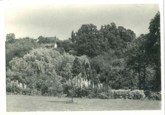 Taken early 1970s from the garden of 'The Chime' looking east.  The property in the distance is 'Crescent House' located in Mount Crescent. | Harry Emery