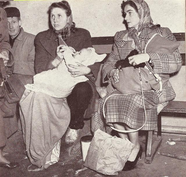 'Mrs Gwendoline Brown with Ronald (4 months) and Mrs Gloria Budd with Rowland (15months) in the reception centre at Benfleet School. They were among the many refugees from Canvey Island, the most stricken of flood areas.'