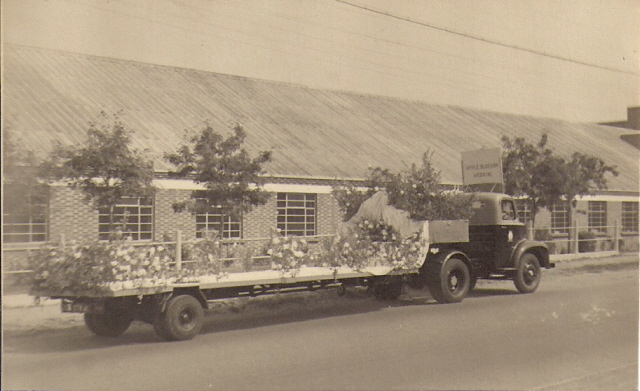 Essex Carriers were very keen on developing links with the local community. We see here of their lorries parked outside Glanfields factory on the London Road Benfleet, all decked out for entering a local carnival. | F. Lazell