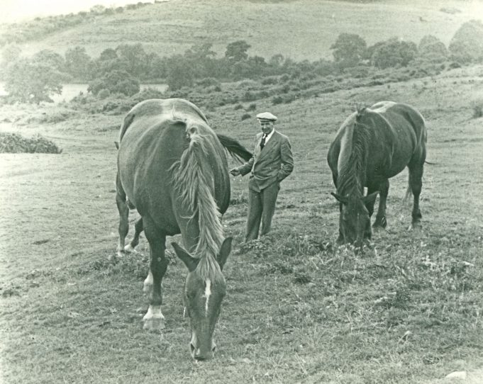 Father with the horses on The Downs. | Maureen Watson
