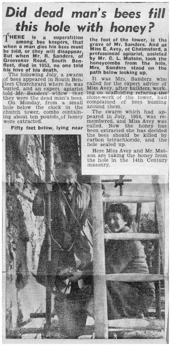 Newspaper article 1954 | Betty Matson
