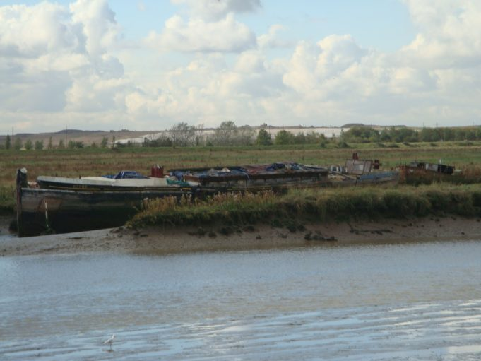 Scone in Benfleet Creek, 13th October 2012 | Mark Thres