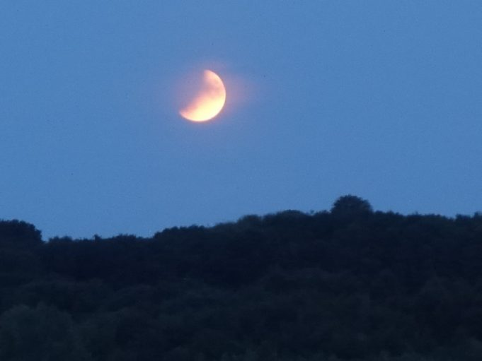 Partial Eclipse of the moon 5 | Christine Coley