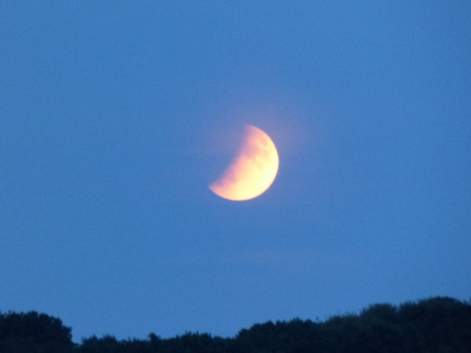 Partial Eclipse of the moon 3 | Phil Coley