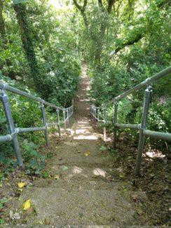View down steps, refurbished in 2020. | Susan Mansfield