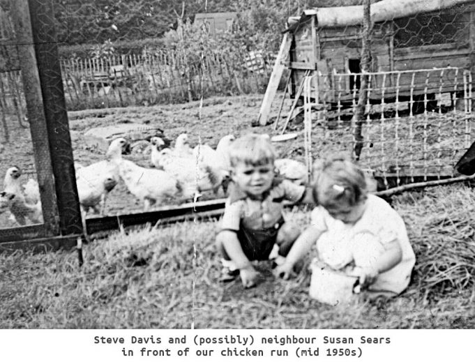 Steve Davis and possibly neighbour Susan Sears in front of the chicken run mid 1950s | Steve Davis