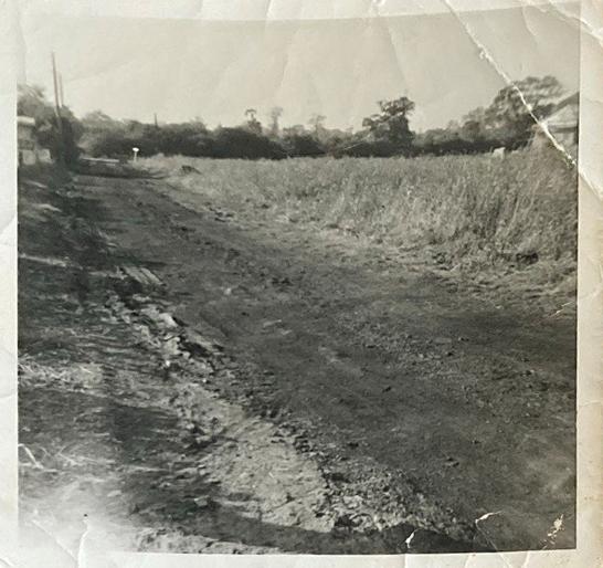 Arundel Road looking west towards Rushbottom Lane c.1960 | Pat White