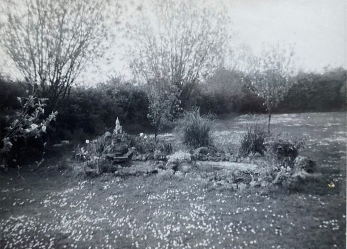 The fish pond that my father built | Pat White