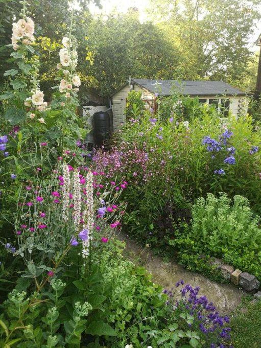 Mill House Garden, Norfolk | Andrew Thrush